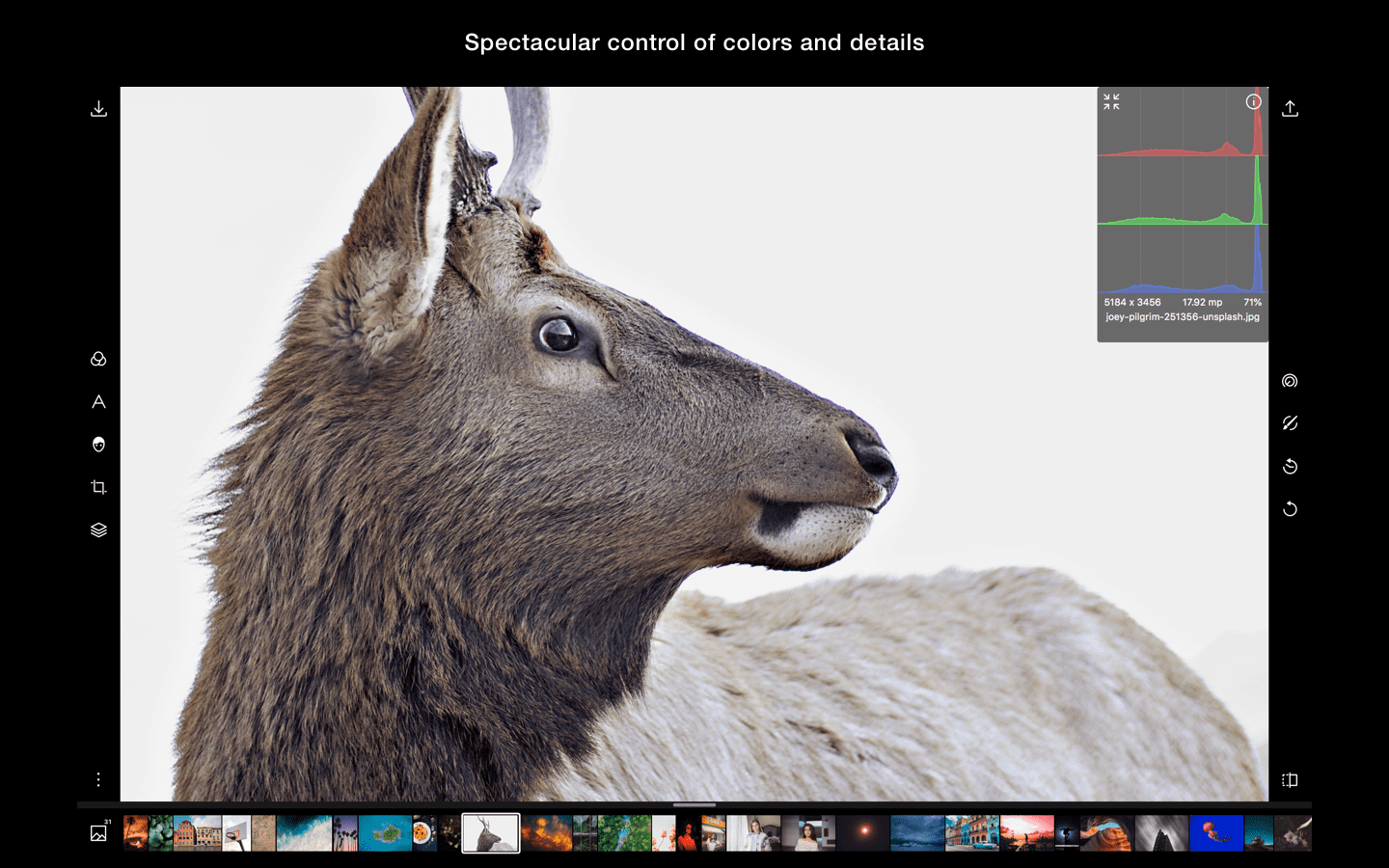 Photo Editor for Windows | Polarr