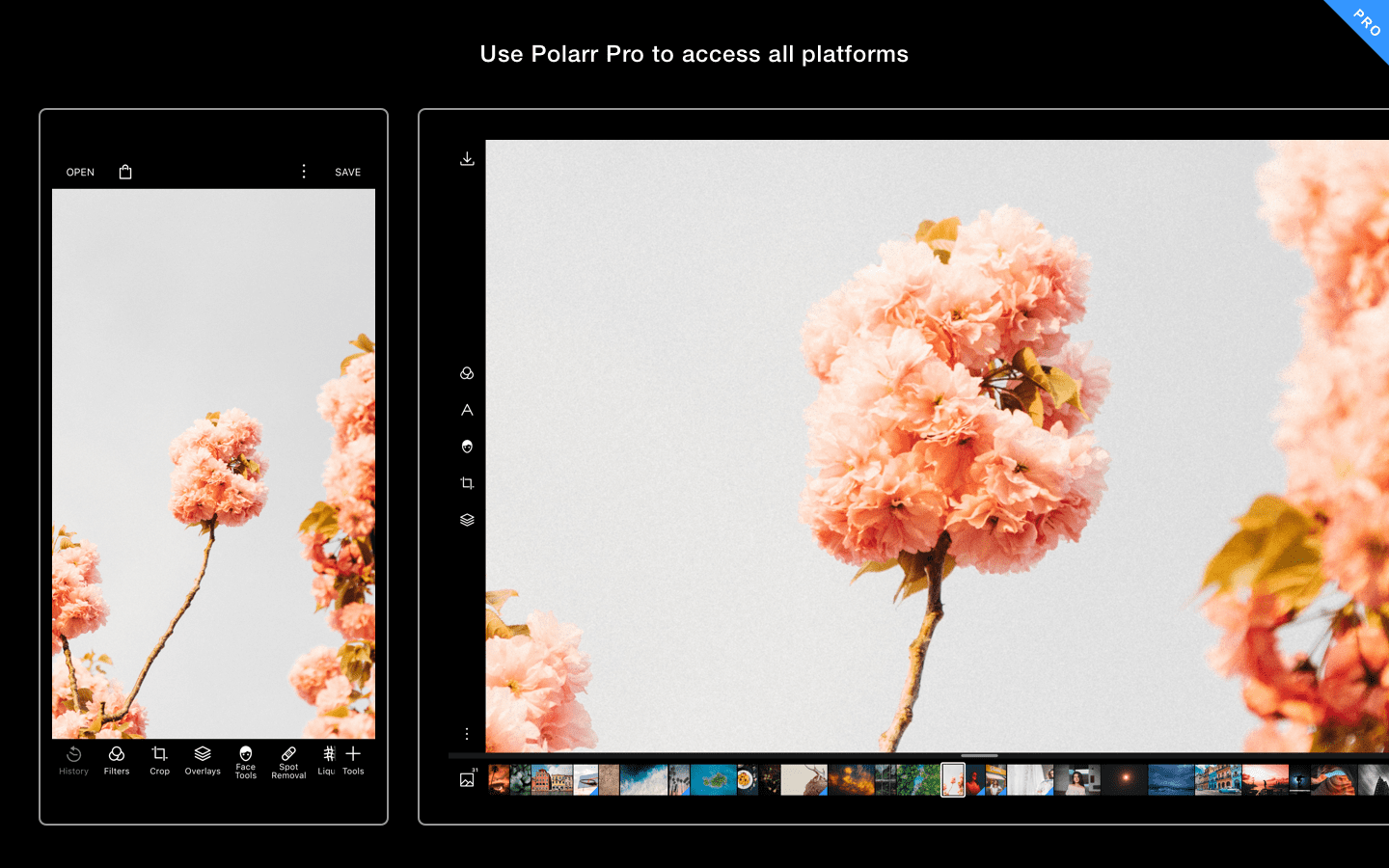 Online Photo Editor | Polarr
